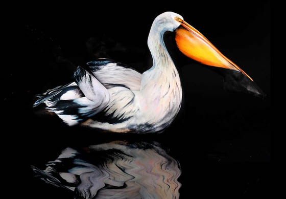 Animal Camouflage Amazing Body Painting Art New Ideas And Innovations