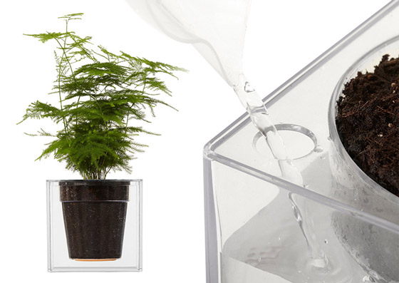 Cool Gadgets For Watering Plant New Ideas And Innovations