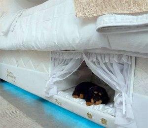 mattresspetbed03