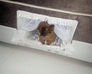 mattresspetbed06