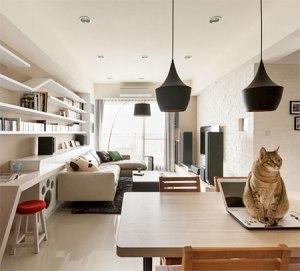 catbookshelves06