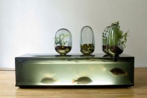 aquarium09