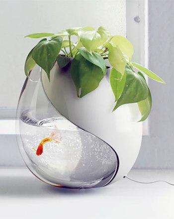 fishbowlplanter02